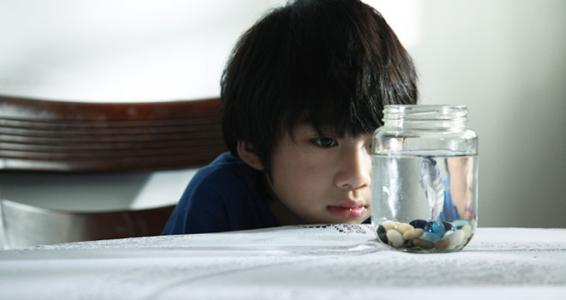 为什么自闭症儿童可能面临欺凌风险增加的风险