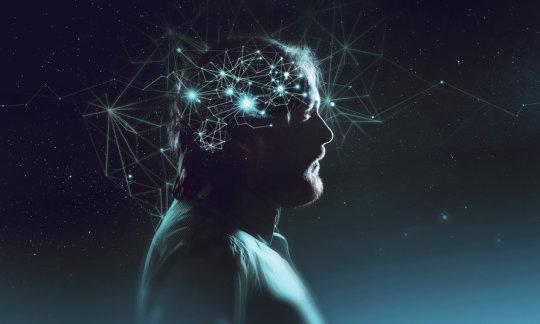聪明的人有更好的连接大脑
