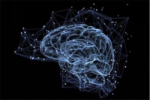 忘记还是记得?记忆取决于微妙的大脑信号