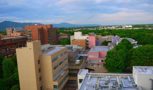日本近年来推出了超级国际化大学项目