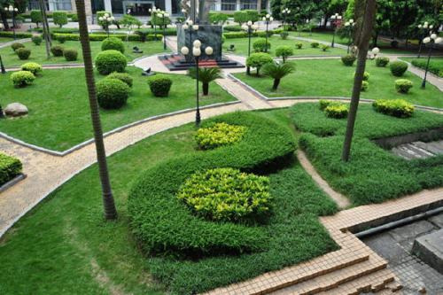 日本组织启动学校绿化计划
