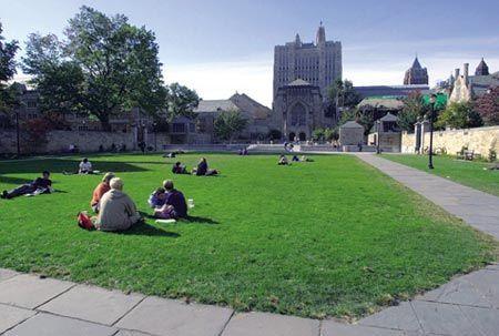 大学是否正在破坏全球毕业生就业市场